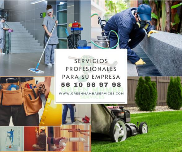 Green-Mamba-Servicios-profesionales
